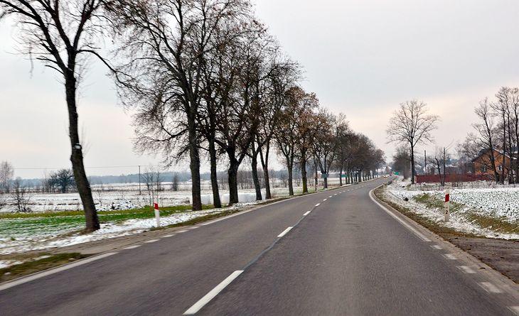 Na drogach gminnych i wojewódzkich pojawią się nowe znaki, a inne zostaną usunięte. Dotyczą kierowców ciężarówek.