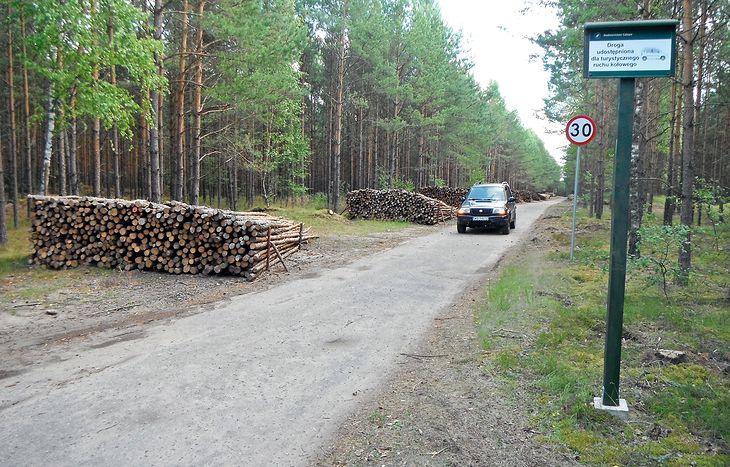 Drogi leśne są znakowane i tylko takimi można się poruszać. Jednak nie wszędzie spotkamy takie znaki. Lasy Państwowe przygotowują regulacje, które nie będą pozostawiały żadnych wątpliwości.