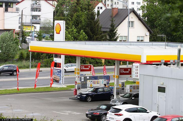 Shell planuje przeznaczyć środki z opłat na wspieranie projektów zalesienia