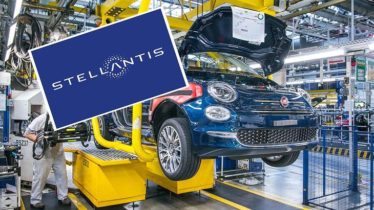 Stellantis działa również w Polsce, w ramach fabryk Fiata