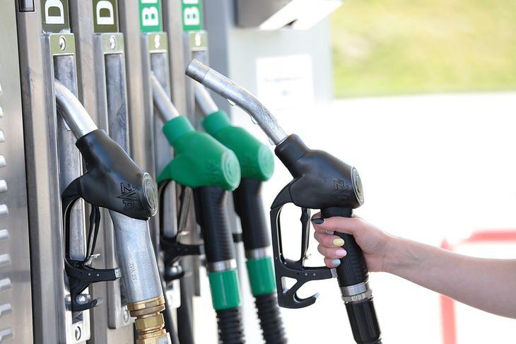 Złej jakości paliwo może kosztować nas remont silnika
