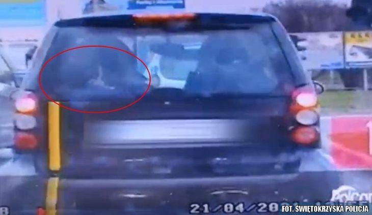 Za tylną szybą smarta policjanci zauważyli coś niepokojącego.