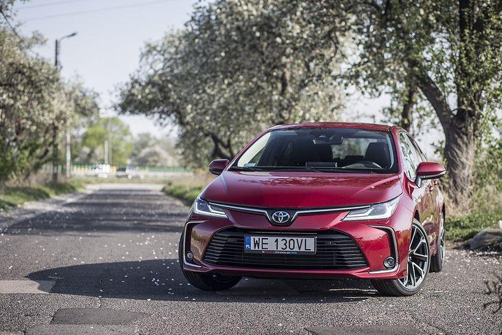 Toyota Corolla z hybrydowym napędem wydaje się jednym z faworytów przetargu.