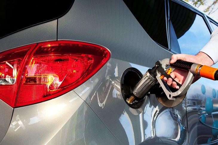 Obecne ceny LPG pozwalają na bardzo tanią jazdę.