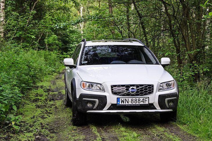 Auto w lesie może znaleźć się tylko w kilku uzasadnionych przypadkach
