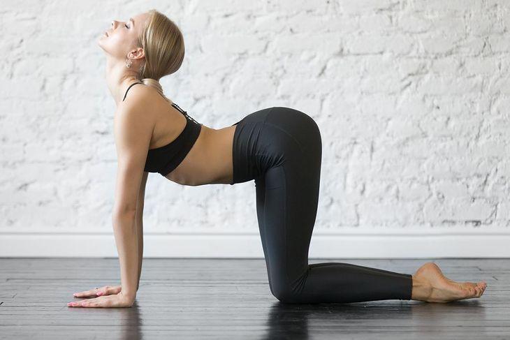 Koci grzbiet to świetne ćwiczenie na mięśnie pleców