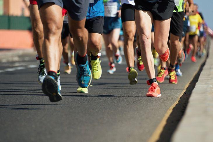 Na zdjęciu: biegacze