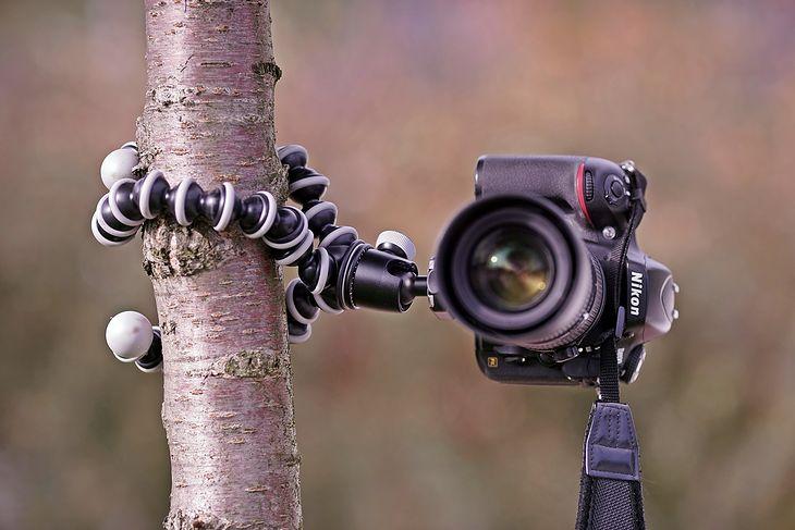 Joby Gorillapod SLR-Zoom, D800 z 70-180 mm f/4,5-5,6D ED Micro Zoom-Nikkorem