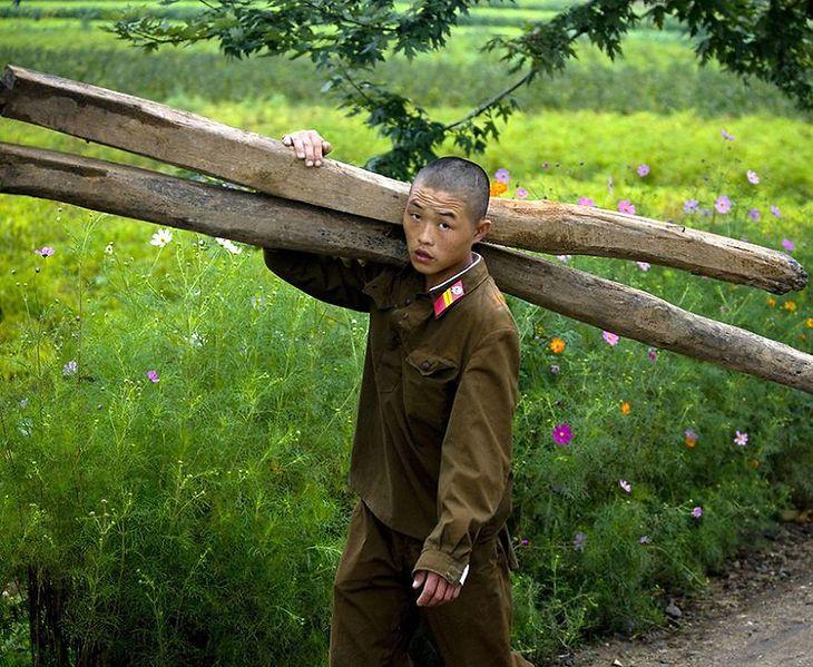 Żołnierze często pomagają na farmach.