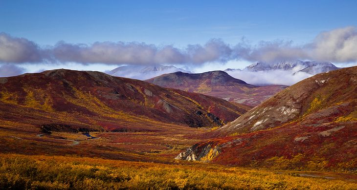 Alaska fot. code poet/ Flickr