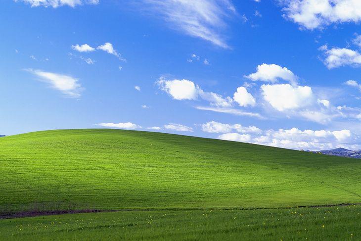"Słynna ""Idylla"" - tapeta z Windowsa XP"