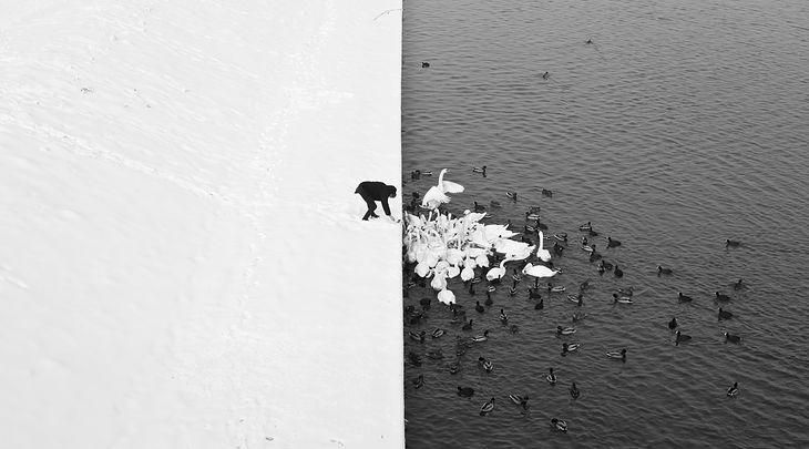 Fot.Marcin Ryczek