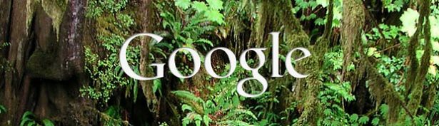 googlevine