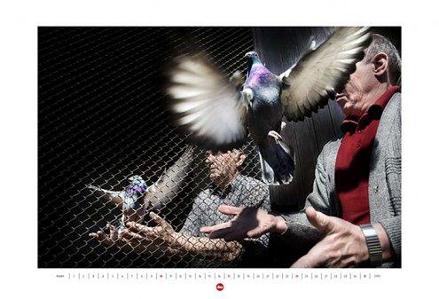 Tylko 50 szt. kolekcjonerskiego kalendarza 2010 Tomasza Tomaszewskiego i Leiki