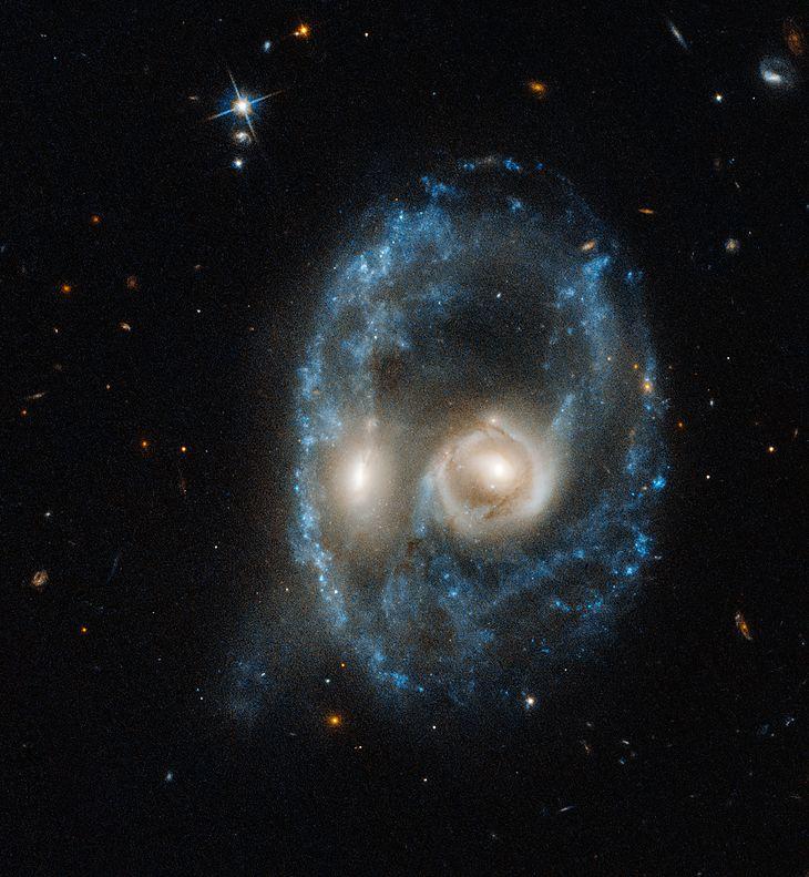 Galaktyka Arp-Madore 2026-424 (AM 2026-424)