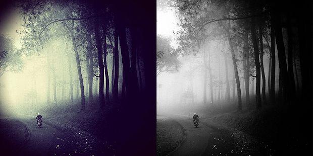 Oryginał po lewej, fot. Hengki Koentjoro