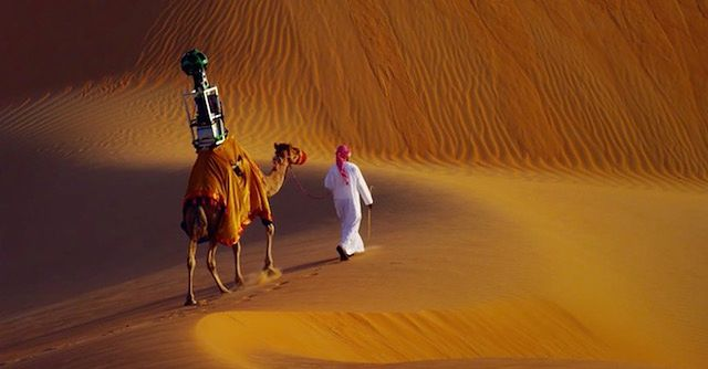 Wielbłąd z aparatami Google Street Viev