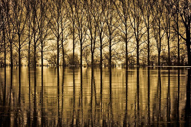 Warta River © Krzysztof Grygiel / Polska