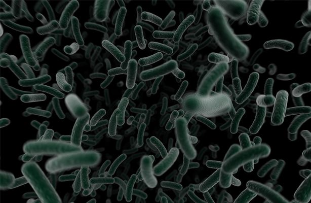 Bakterie pożerają ISS (fot.: sxc.hu)
