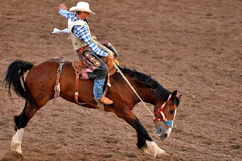 Rodeo (Fot. Flickr/a4gpa/Lic. CC by-sa)