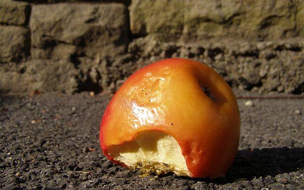 Ile byście zapłacili, żeby pogadać o jabłkach? (Fot. Flickr/erix!/Lic. CC by)