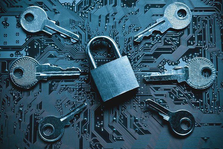 Zdjęcie kłódki z kluczami pochodzi z serwisu Shutterstock