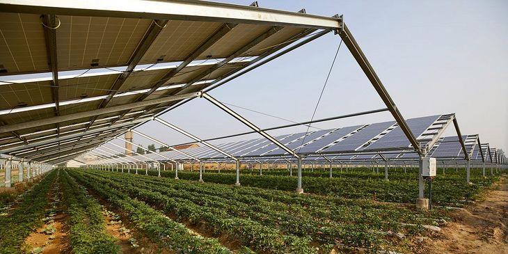 Agrosolar Kula, Serbia. Największa w Europie farma fotowoltaiczna