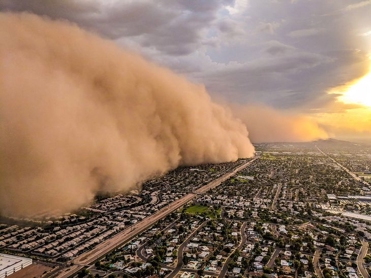 Ekspansja pustyń to na świecie poważny problem