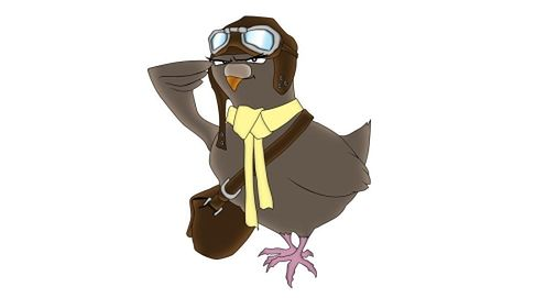 carrier-pigeon