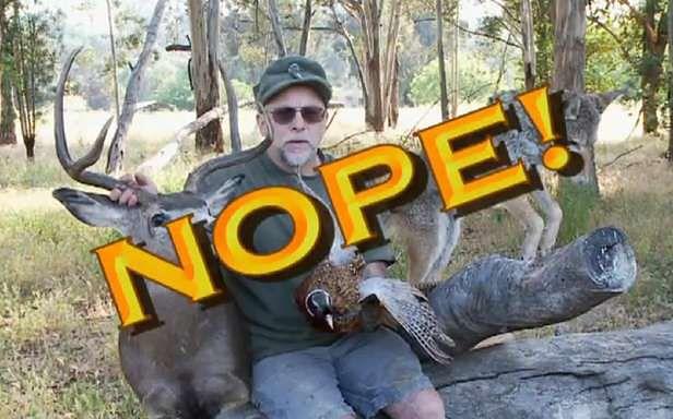 Chuck Testa wie, jak wypychać zwierzęta! (Fot. YouTube)