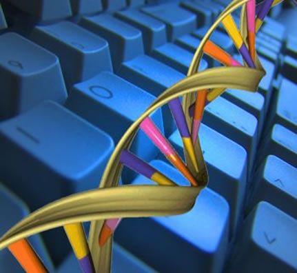 Komputer Złożony Z Dna Przyszłość Informatyki