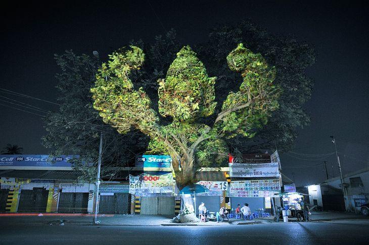 Drzewo-bóstwo wykonane przy użyciu projekcji 3D