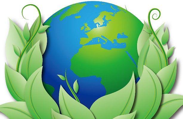 Światowy Dzień Ziemi (fot.: sxc.hu)