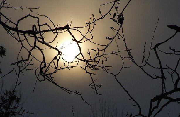 Wielkanoc i pełnia Księżyca (fot.: sxc.hu)