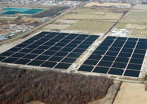 farma słoneczna