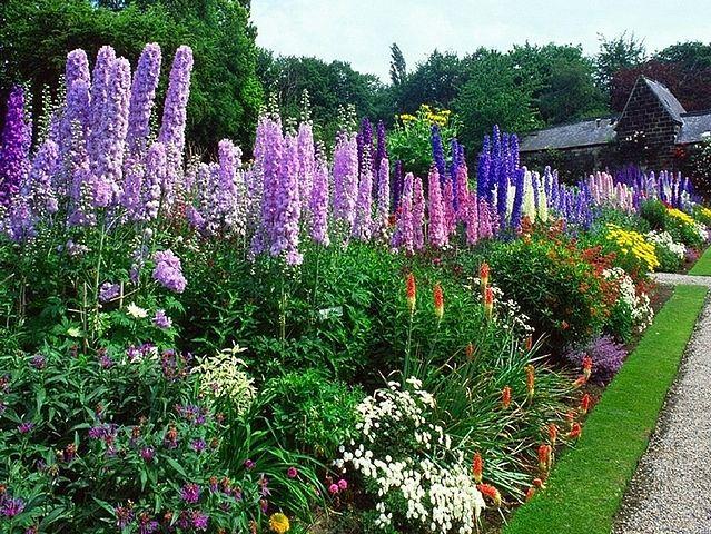Zamień Swój Pulpit W Piękny Ogród Zbiór Tapet