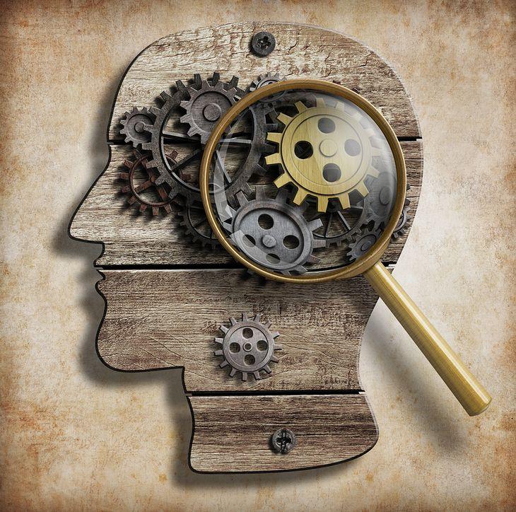 Grafika głowy pochodzi z serwisu shutterstock.com