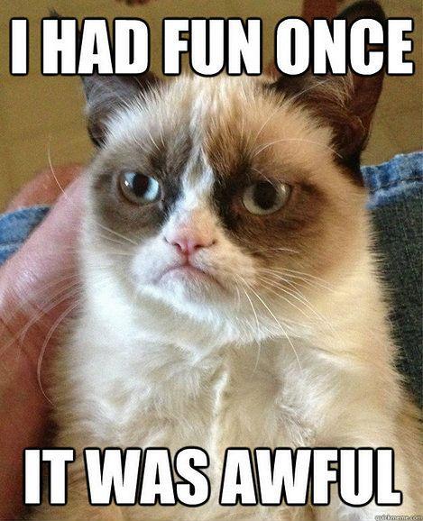 15 Najlepszych Internetowych Memów 2012 Roku Gadżetomaniapl