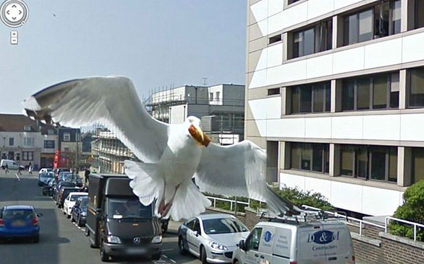 Wszystkie zdjęcia: Jon Rafman/Google Street View