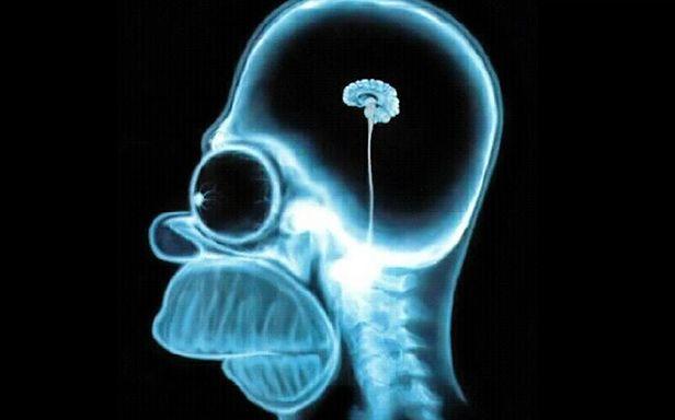 Mózg Homera Simpsona - ostateczny dowód upadku