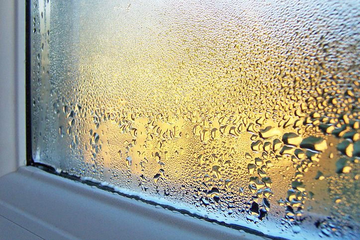 Nadmierny poziom wilgotności powietrza szkodzi nie tylko nam, ale również otoczeniu.