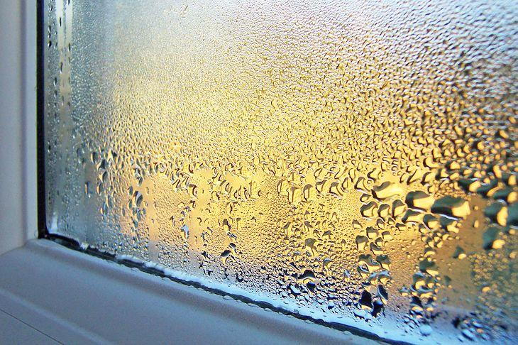 Wilgoć w domu może powstać wskutek zbyt szczelnych okien