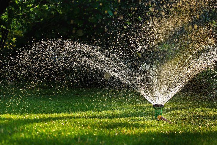 Włączony zraszacz ogrodowy nie tylko podlewa, ale również zdobi nasz ogród