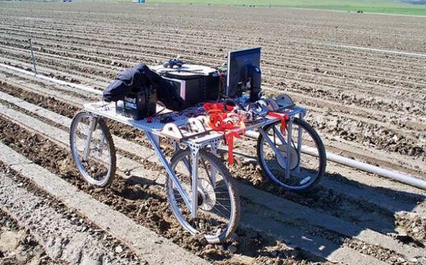 Lettuce Bot - wczesna wersja prototypu (Fot. Dvice.com)