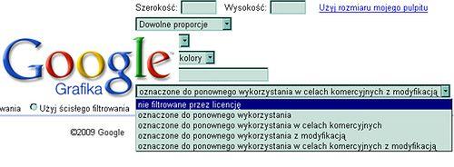 licencje grafik google