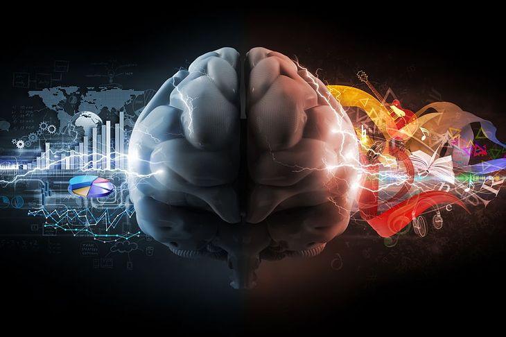 Grafika przedstawiająca ludzki mózg pochodzi z serwisu Shutterstock