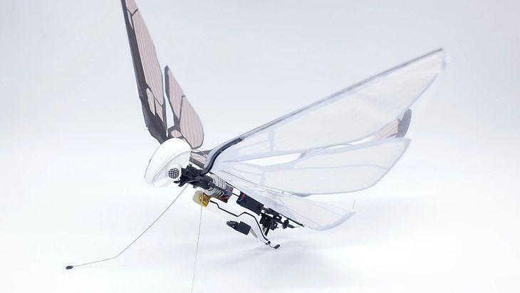 Bioniczny dron MetaFly