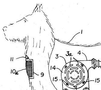 odkurzaczo-pies