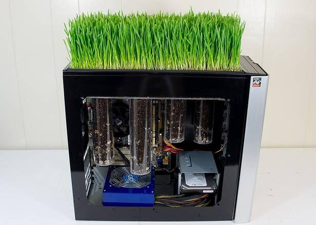 Komputerowy trawnik(Fot. TotalGeekdom.com)