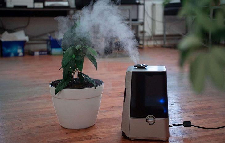 Podpowiadamy, jak nawilżyć powietrze w pokoju